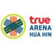true arena